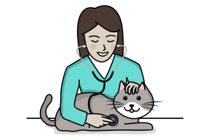 cat checkup icon