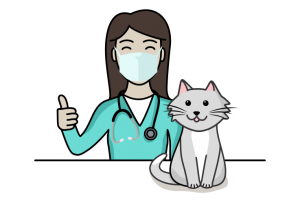 cat surgery icon