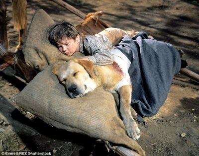 Young Boy Fell asleep with his Dog